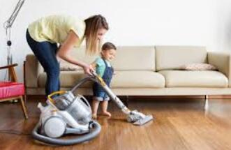 best hard floor steam cleaner
